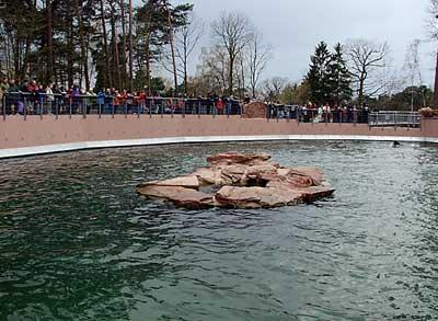 OeB-Tiergarten-Nuernberg-Aqua-ParkBA1-13
