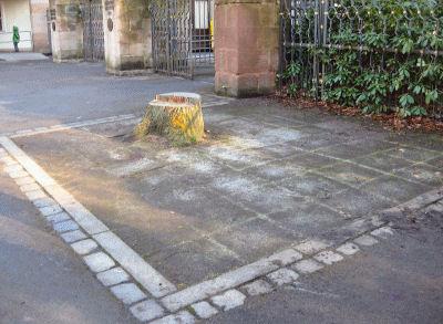 OeB-Tiergarten-Nuernberg-Kassenhaus-01
